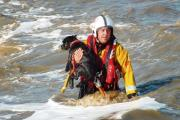 Dog saved after 30ft fall